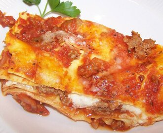 QUICK AND EASY TURKEY LASAGNA