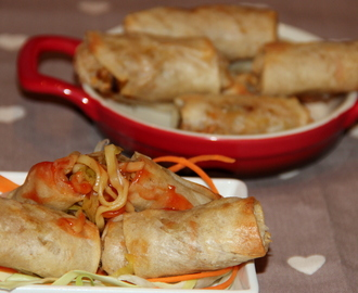 Spring rolls filled with veg noodles