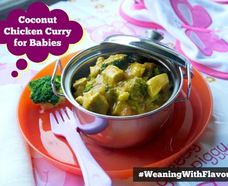Coconut Chicken Curry for Babies