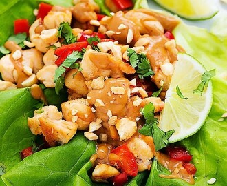 White Chicken with Spicy Peanut Sauce