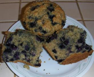 Healthy Blueberry Oat Bran Muffins
