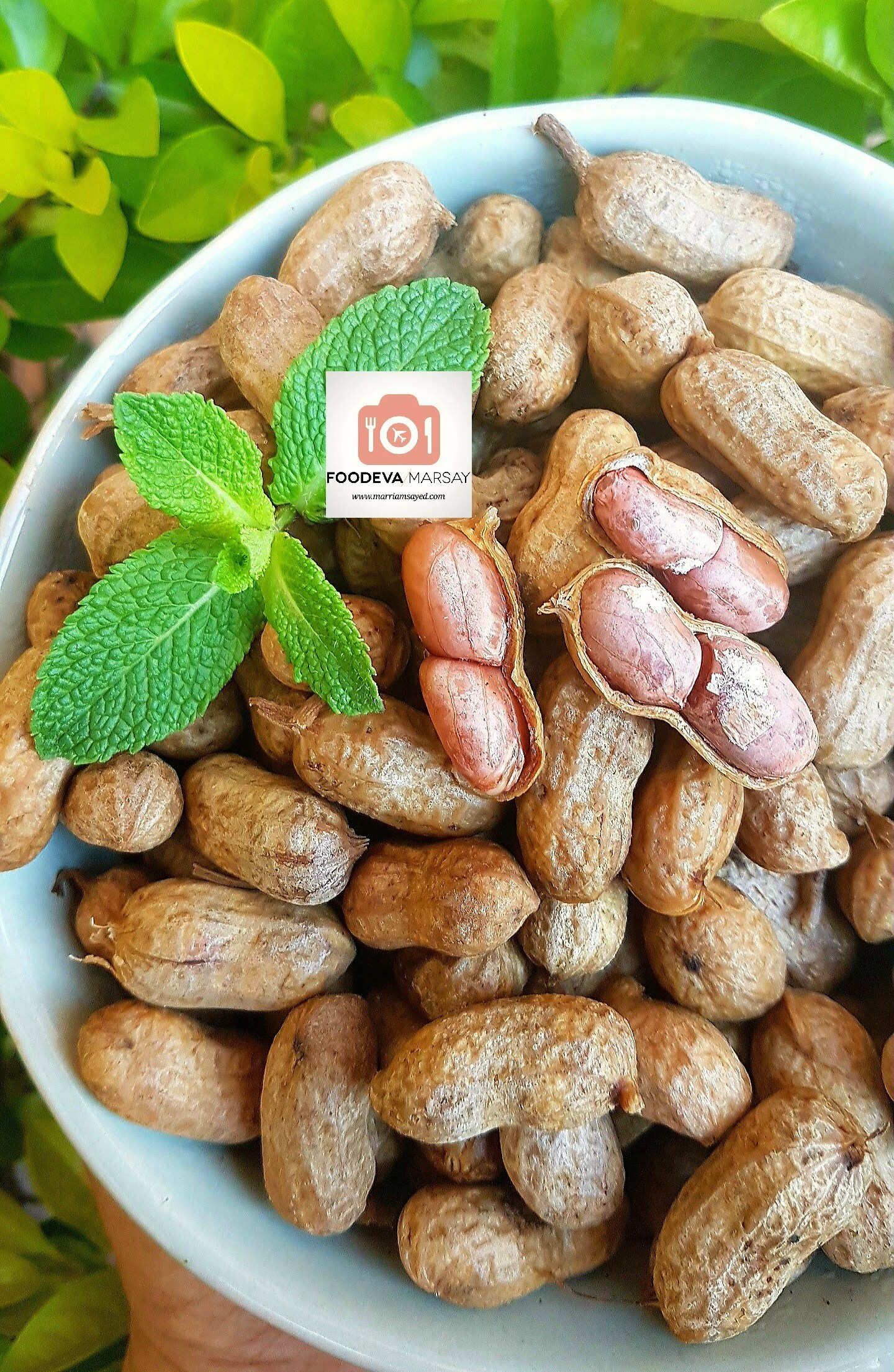 How To Make Perfectly Boiled Peanuts