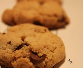 Biscuits croquants aux brisures de chocolat
