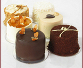 Mini Cake Sampler – Black Hound New York