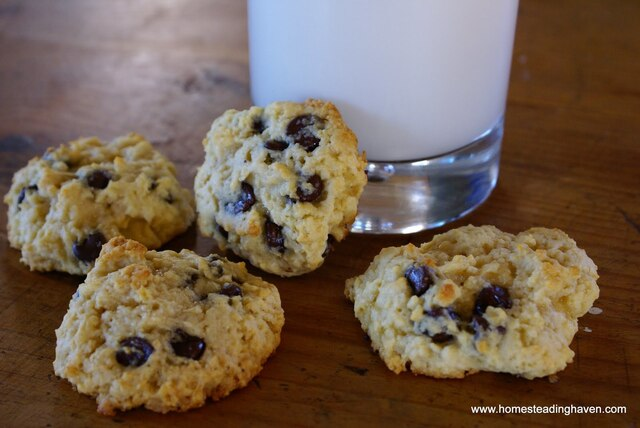 Easy Baking Recipes, Desserts: Chocolate Chip Cookies