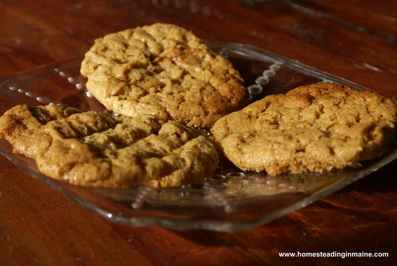 Easy Baking Recipes, Desserts: Flour-less Peanut Butter Cookies