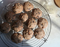 Crunchy chocolade-haver-boekweitcookies – crunchy chocolate oat and buckwheat cookies (GF-DF-V)
