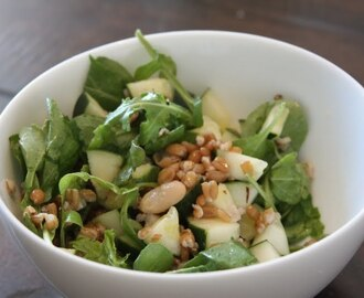 Farro Salad with Cucumber Arugula and Cannellini Beans