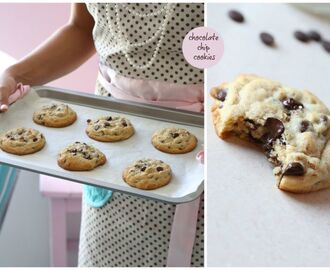 Southern pecan chocolate chip cookies
