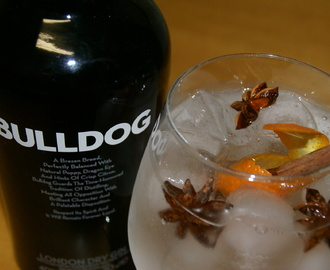 Orange Spicy - Gin Tónico Bulldog