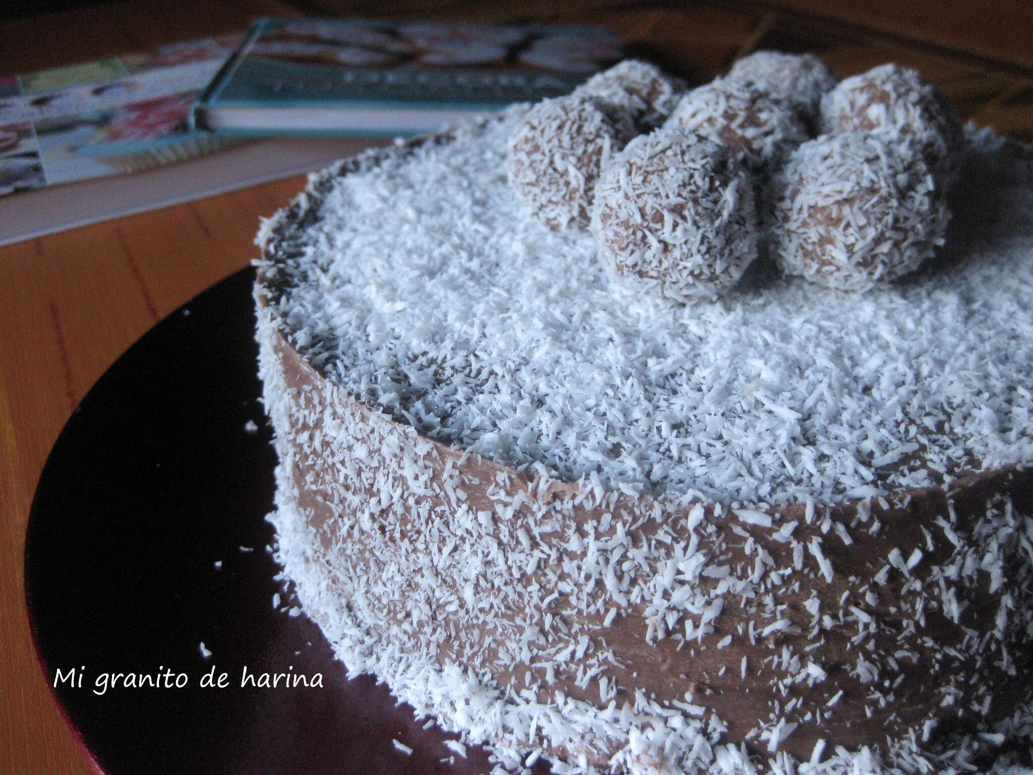 Tarta de coco y chocolate