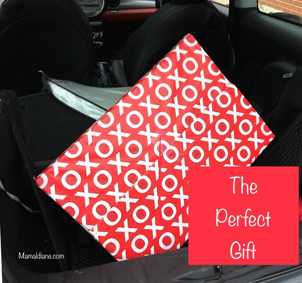 The Perfect Gift is a Canvas Print Review & Giveaway