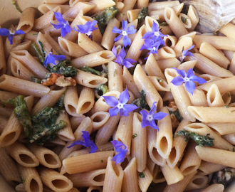 Wholemeal Penne with Borage, gorgonzola and walnuts - Penne integrali con borragine, gorgonzola e noci