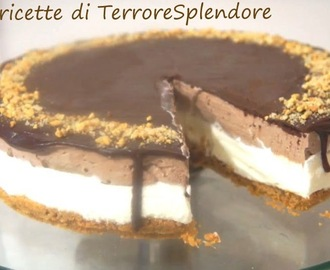 Torta gelato doppio strato - double-layer ice cream cake
