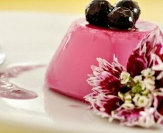 Mousse de Blueberry