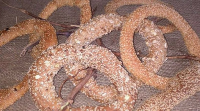 GREEK KOULOURI (SIMIT)