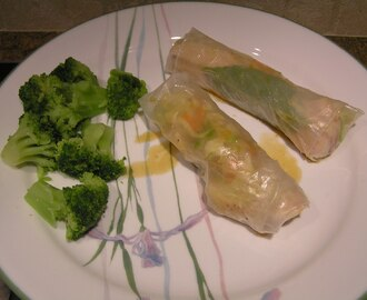 Chicken Spring Rolls - Easy