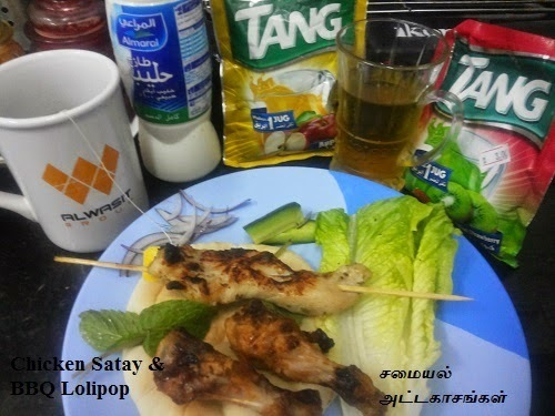 Chicken Satay / Electric Grill