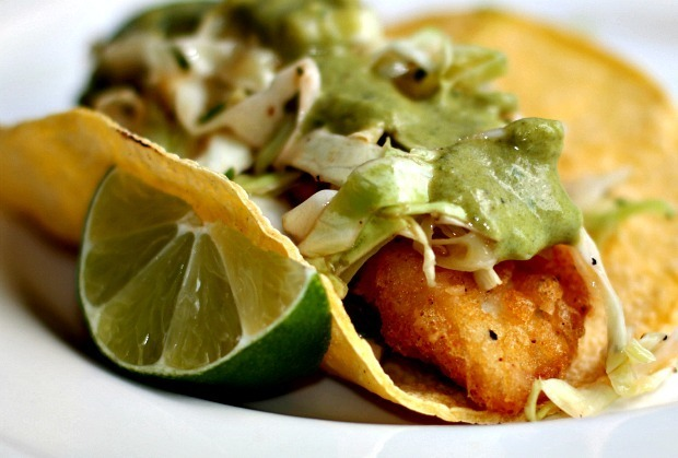 Beer Battered Fish Tacos with Chipotle Slaw and Roasted Poblano Sauce