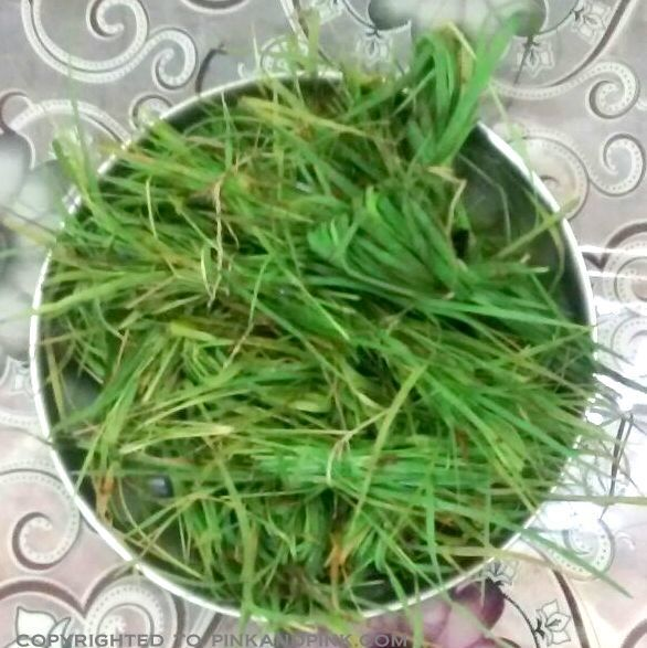 Arugampul Juice Preparation, Medicinal Uses, Health Benefits | Durva Grass