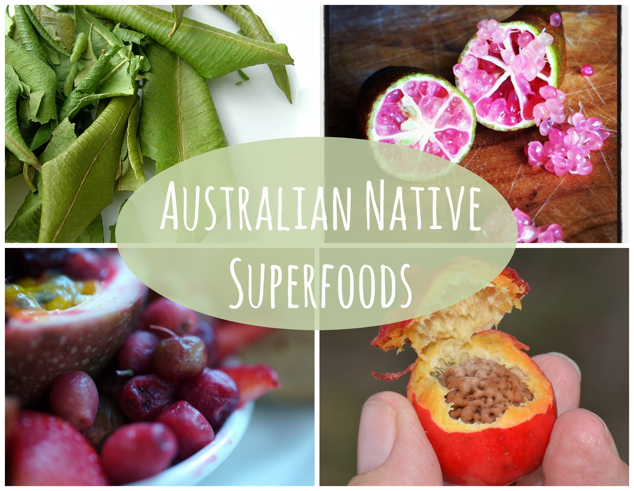 Australian native superfoods