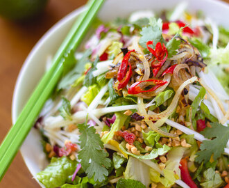 Vietnamese Chicken and Green Papaya Salad