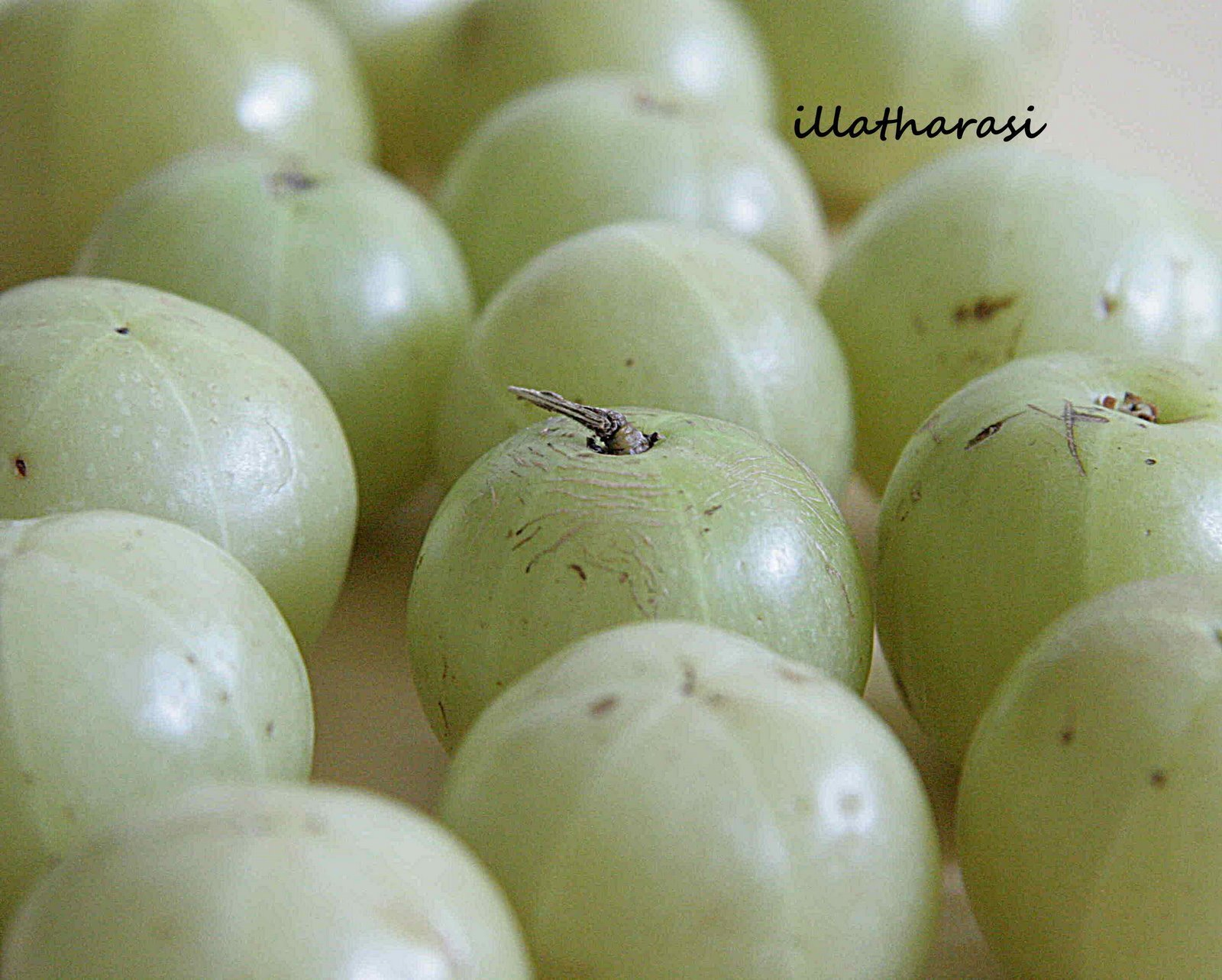 A Fruit A Month - Gooseberry