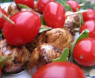 Tomato and Marinated Baby Bocconcini Appetizers