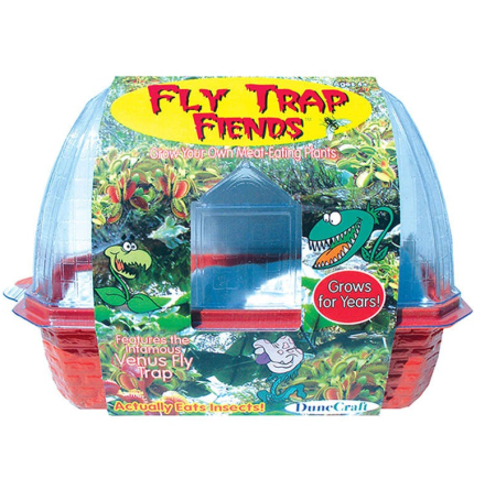 Fly Traps Friends Terrarium