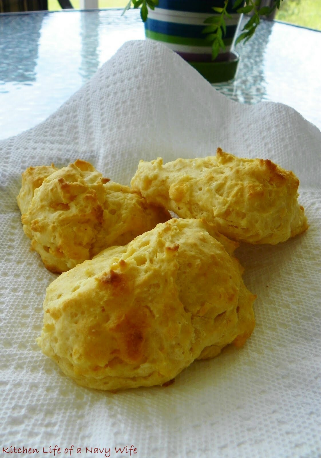 Cheddar Garlic Biscuits...A Great Snack!
