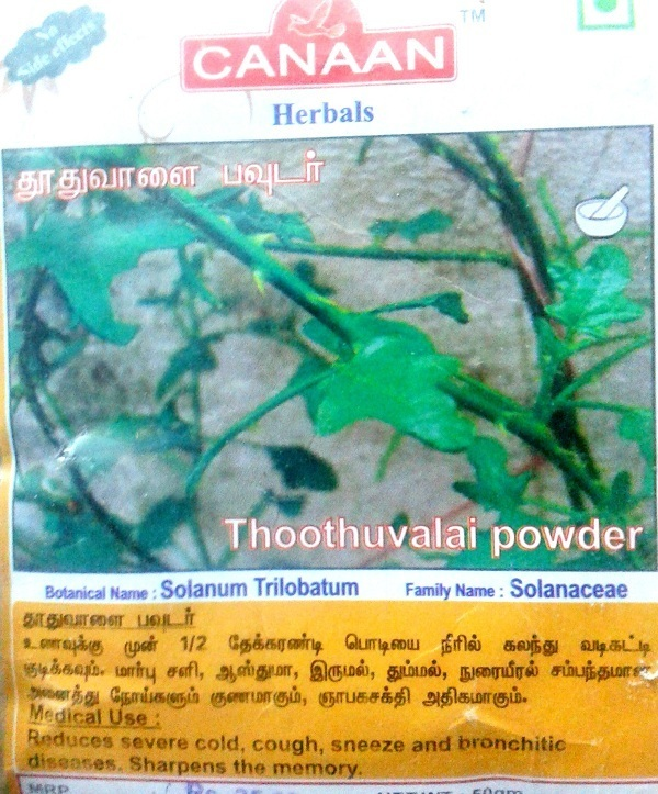 Thuthuvalai | Thoothuvalai Benefits and Medicinal Uses