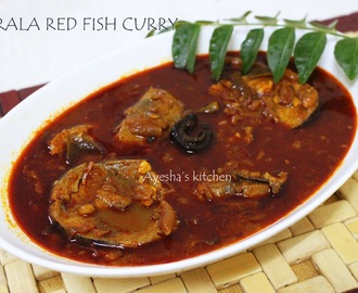 KERALA RED HOT FISH CURRY - FISH RECIPES