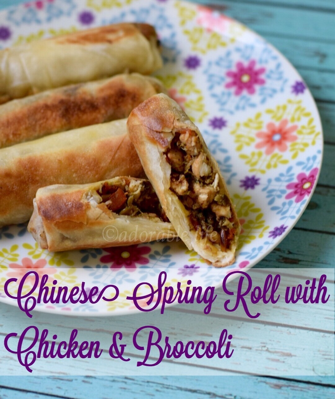 Chinese Spring Rolls with Chicken & Broccoli