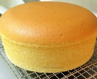 Basic sponge cake without fat