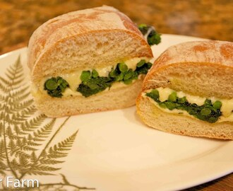 Garlic Rapini and Cheese Sandwiches