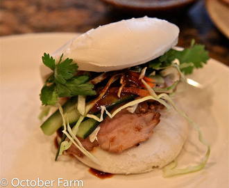 Asian Pork Buns (Char Siu Pork)