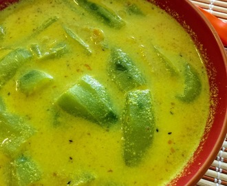 LIGHT RIDGE GOURD CURRY