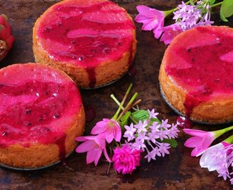 Dragon Fruit Cheesecake With Coconut Oat Crust [Vegan]