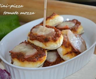 Mini pizza tomate mozza