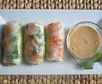 Summertime Rolls with a Peanut Dipping Sauce