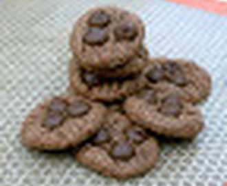 Almond, Coconut and Choco Chip Cookies (Gluten and Egg Free)