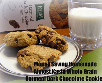 Money Saving Homemade Almost Kashi Whole Grain Chocolate Oatmeal Cookies