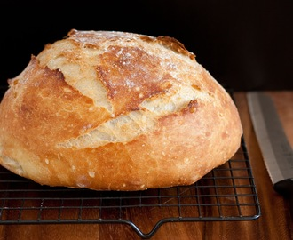 Crusty Rustic Bread (it's no knead!)