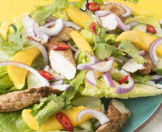Indian Chicken and Mango Salad