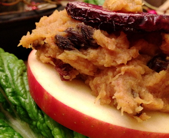 Apple Stacks! Gluten Free, Vegan, SCD!