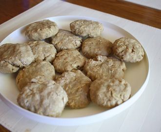 Peanut Butter and Oatmeal Dog Biscuits