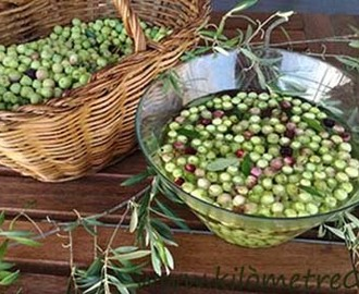 Olives Arbequines adobades