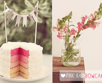 magnolia in the kitchen {pink rainbowcake}