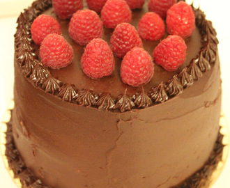 Chocolate cake with ultimate chocolate frosting