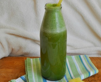 exotic green smoothie a zaostrené na stéviu